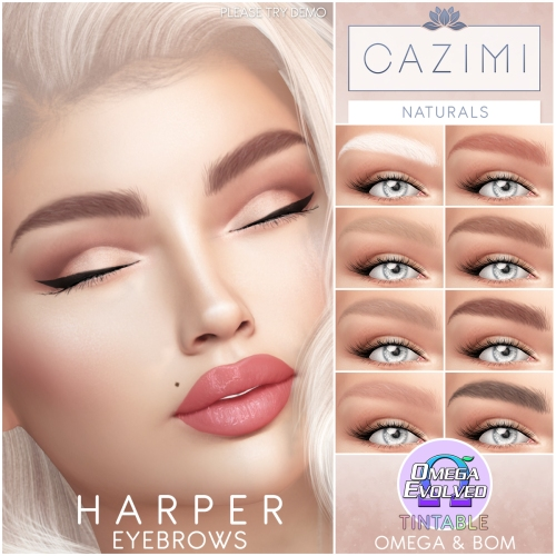 HarperBrows_Ad_1x1
